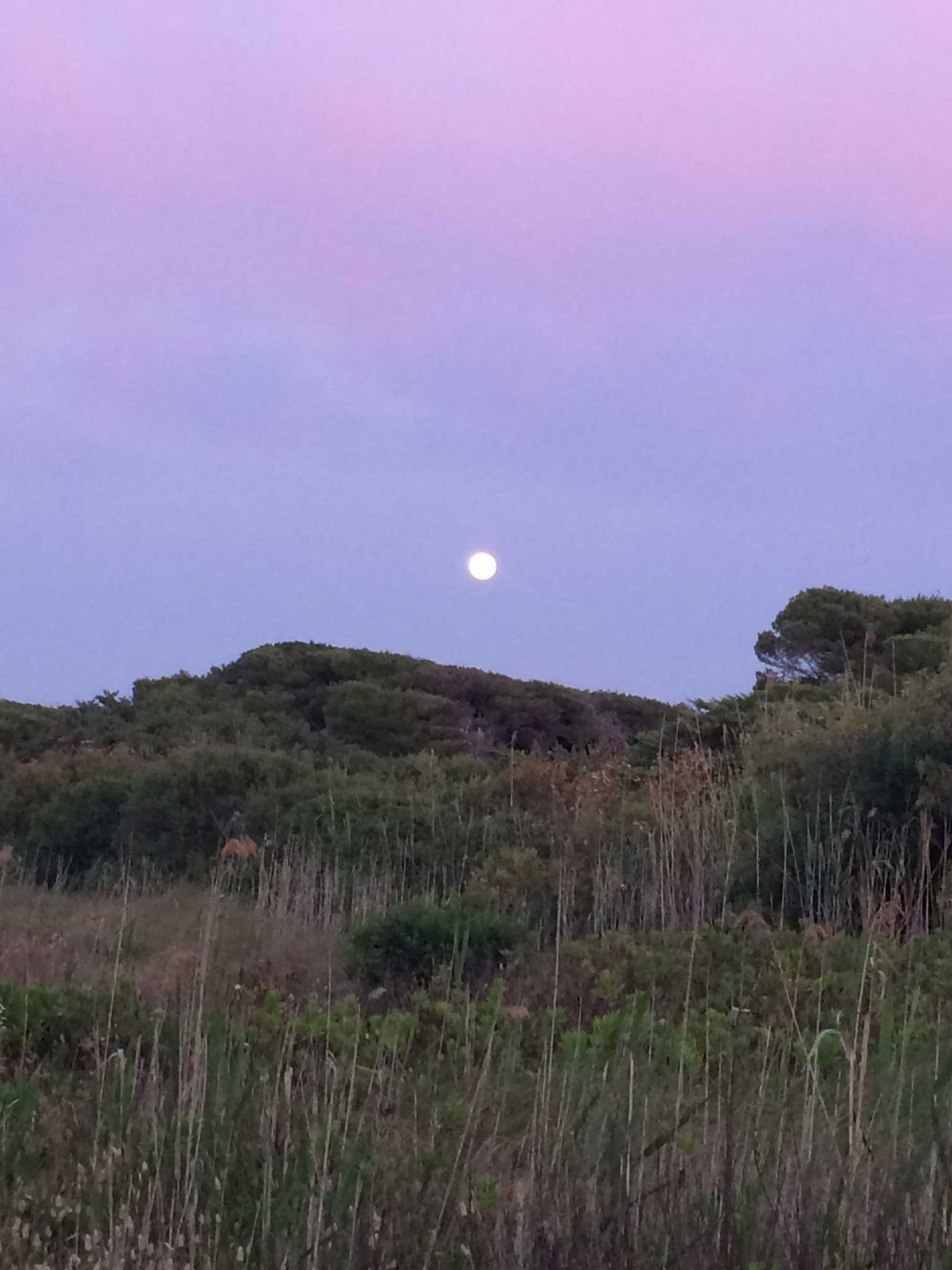 Moon over the dunes in a lilac sky