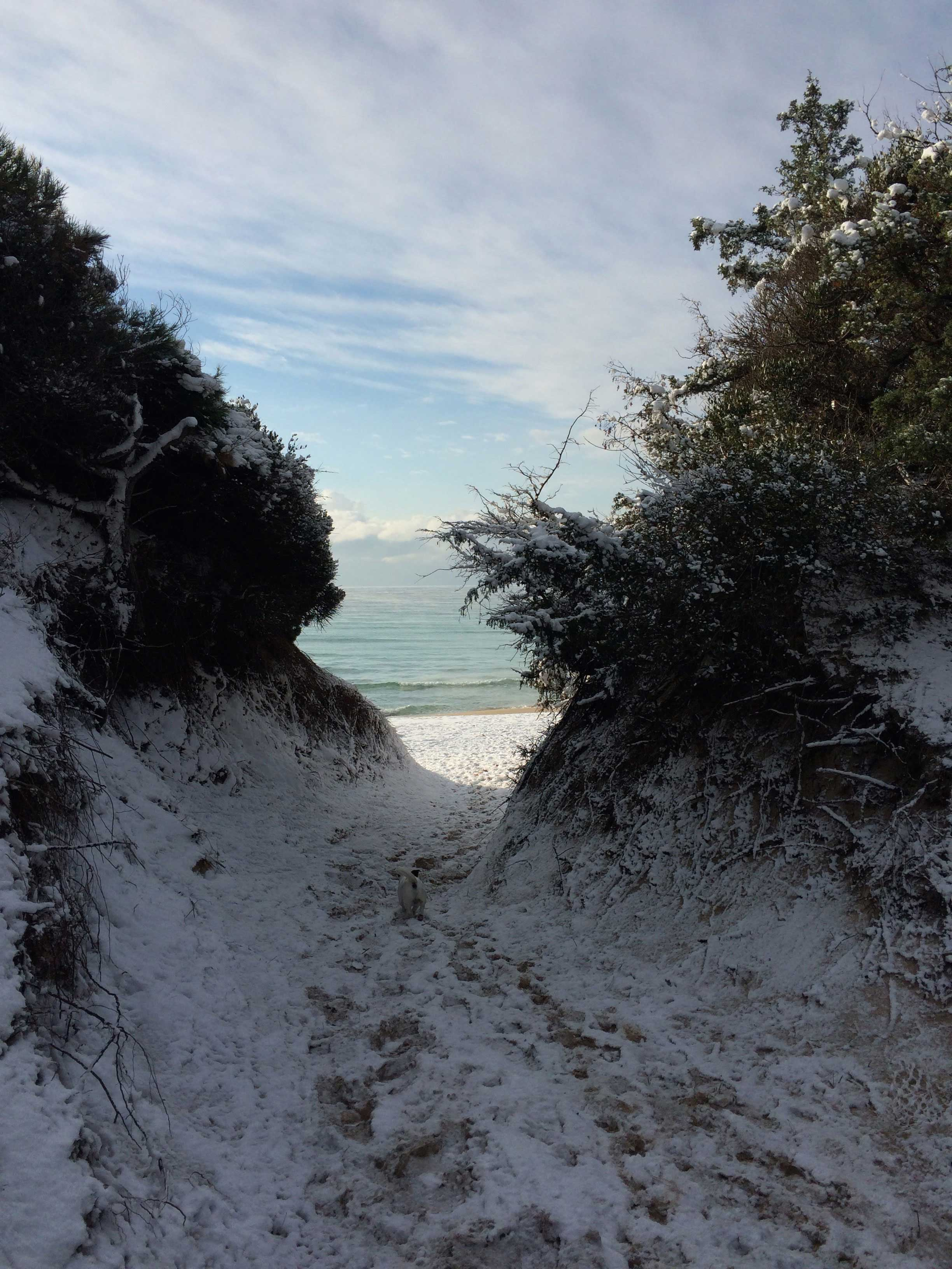 Snowy beach seen through the dunes