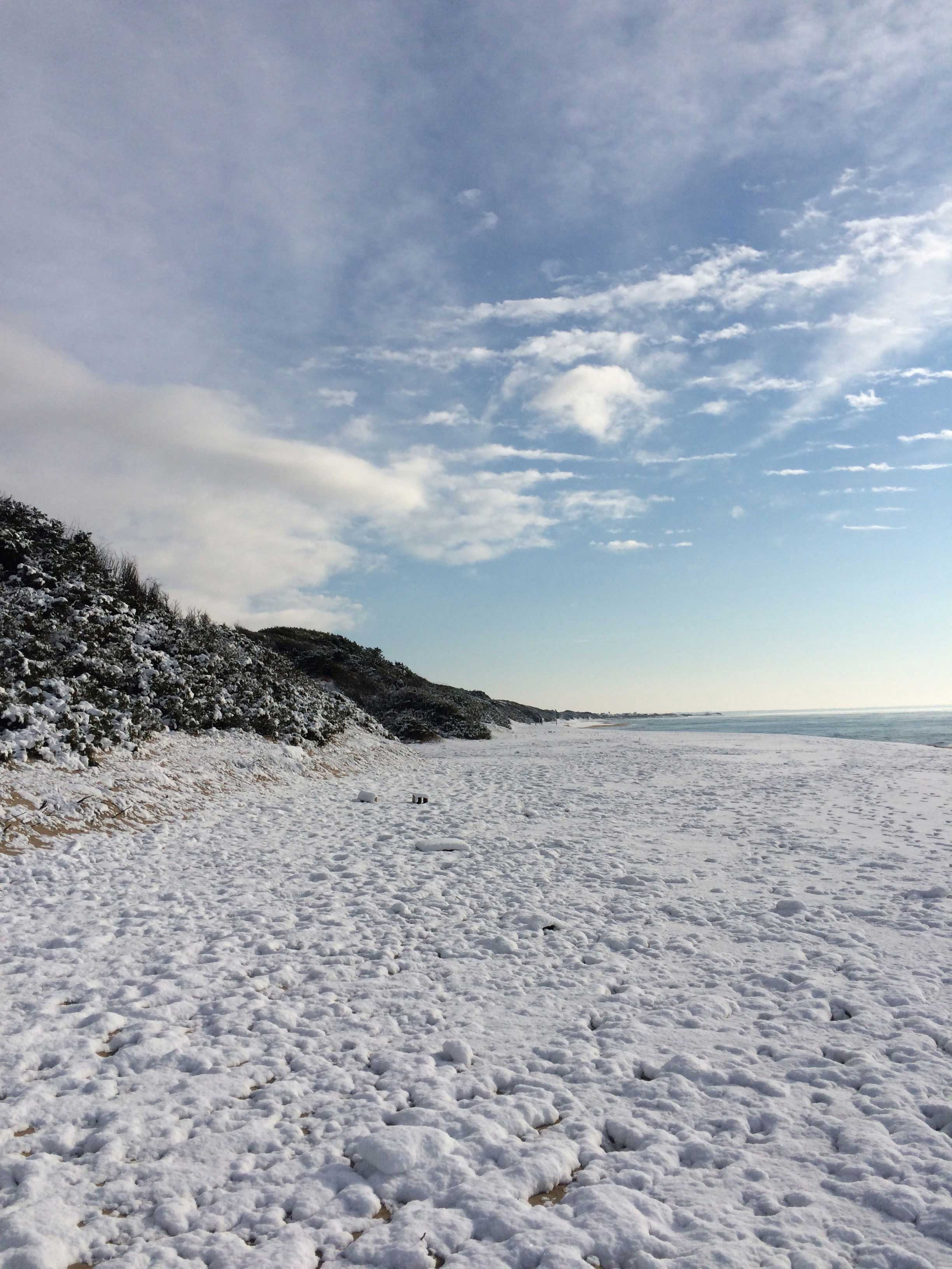 Snow covered beach
